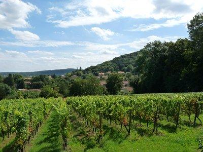 En route pour l'appellation Crémant de Lorraine ! dans Actualité vignoble-Vaux-2