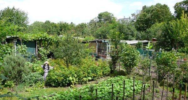 Ble archives des jardins ouvriers for Jardin xavier