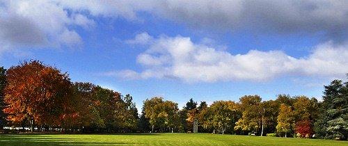 Creutzwald : Quand le cimetière devient parc dans Actualité cimetiere-paysager