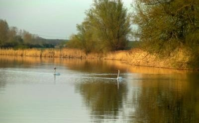 Destruction inadmissible de l'étang de Joudreville dans Actualité etang-joudreville