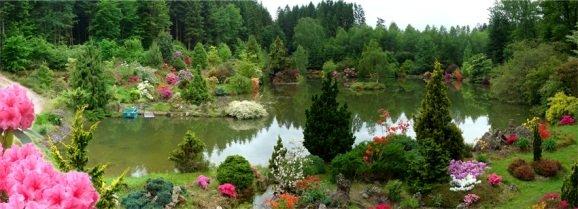 Ble archives jardin botanique de gondremer for Jardin botanique tours