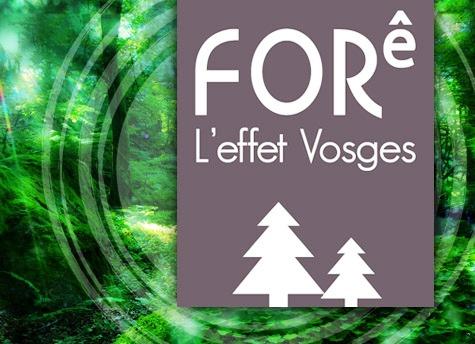 Lancement de la marque FORê L'effet Vosges dans Actualité fore-leffet-vosges
