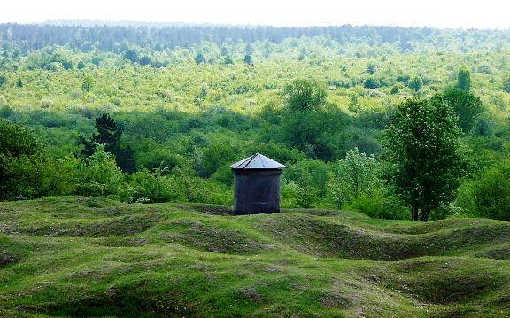 L'ONF souhaite préserver les champs de bataille de Verdun dans Actualité champs-batailles-verdun-foret