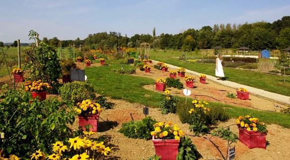 Jardins de la Terre à Vittel dans Culture et patrimoine jardins-de-la-terre-vittel