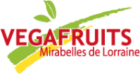 Investissements de VegaFruits à Saint-Nicolas-de-Port dans Actualité logo-vegafruits