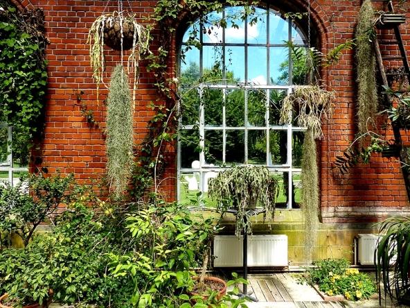 Ble archives sous les tropiques du jardin botanique de metz for Jardin fabert metz