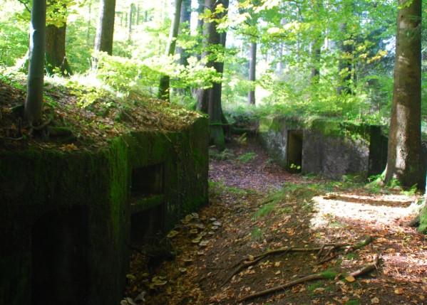 bunkers Donon